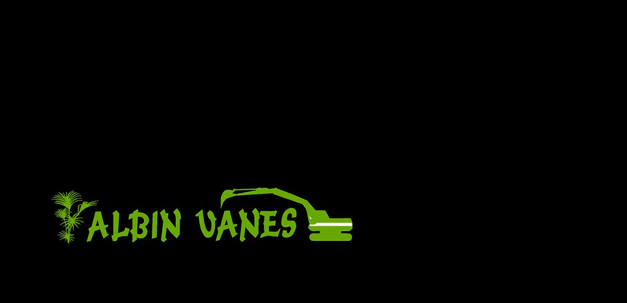 Logo albin vanes